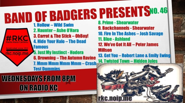 Band of BADGERS PRESENTS PLAYLIST 46 60.jpg