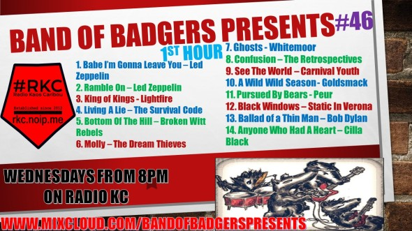 Band of BADGERS PRESENTS PLAYLIST PODCAST 46 hour 1 PROMO.jpg